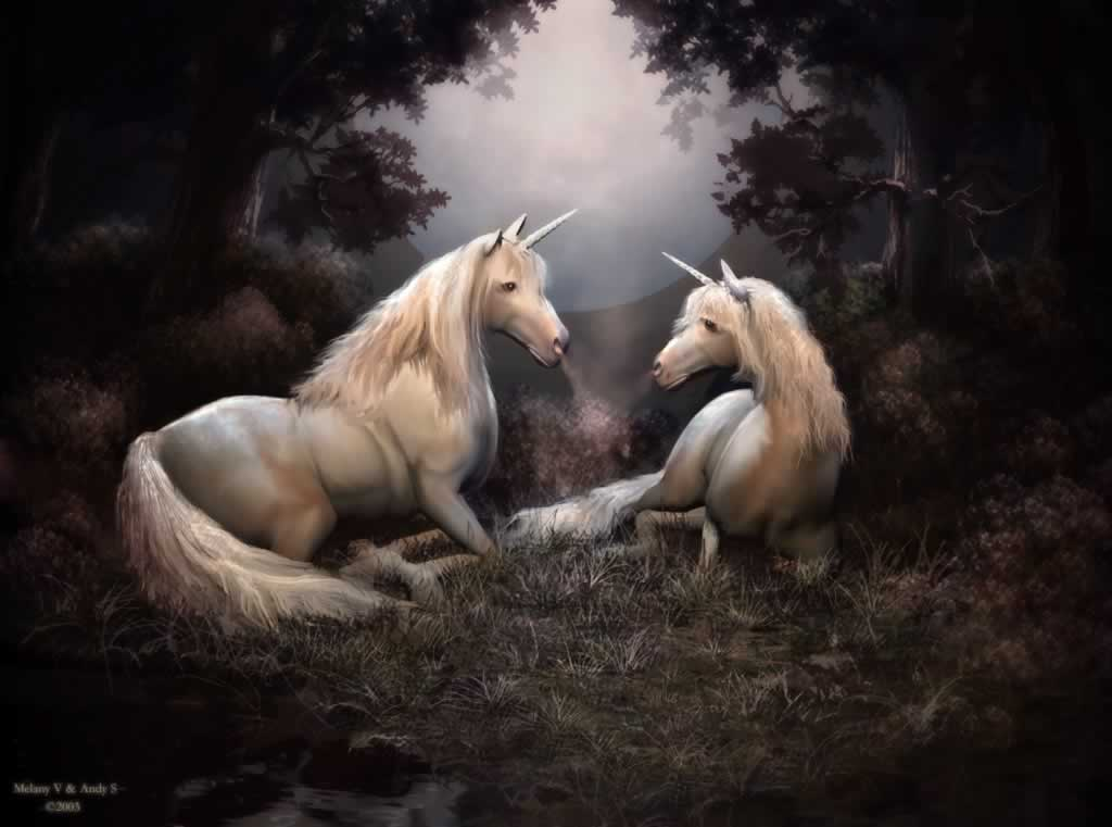 http://www.ans-graphics.com/digital_images/unicorn_story.jpg
